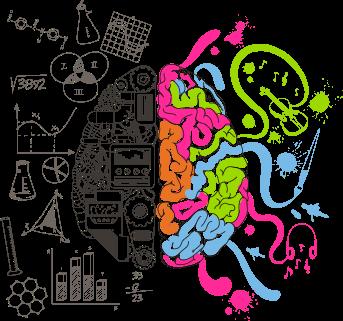 Cerebro como funciona